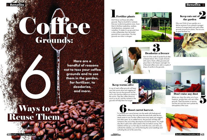 Coffee grounds 6 ways to reuse them social diary - Coffee grounds six practical ways to reuse them ...