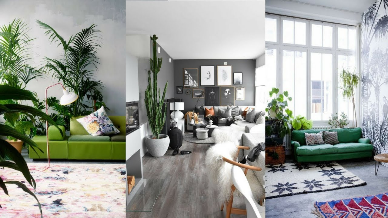 7 benefits of adding plants and greenery to your space - Plant decoration in living room ...
